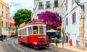 Organize end-of-year trip to Lisbon