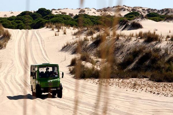 Viaje fin de curso Doñana con guía Natuaventura